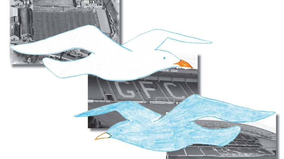 Drama, passion and seagulls: a tale of Brighton and Hove Albion